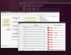 OpenVibe signal display